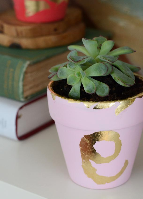 gilded plant pot 4