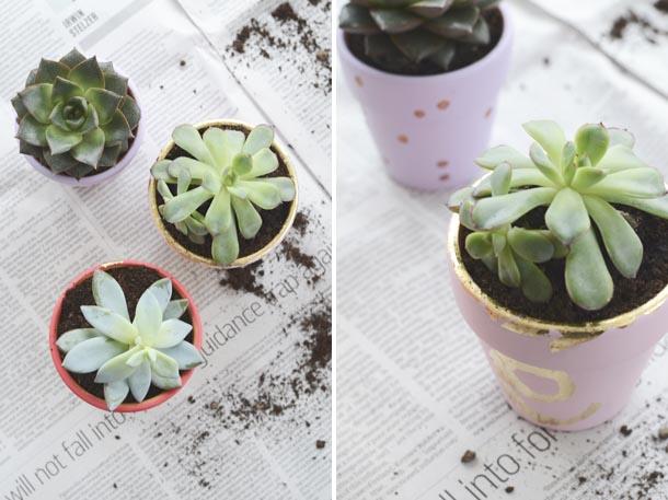 gilded plant pots 1