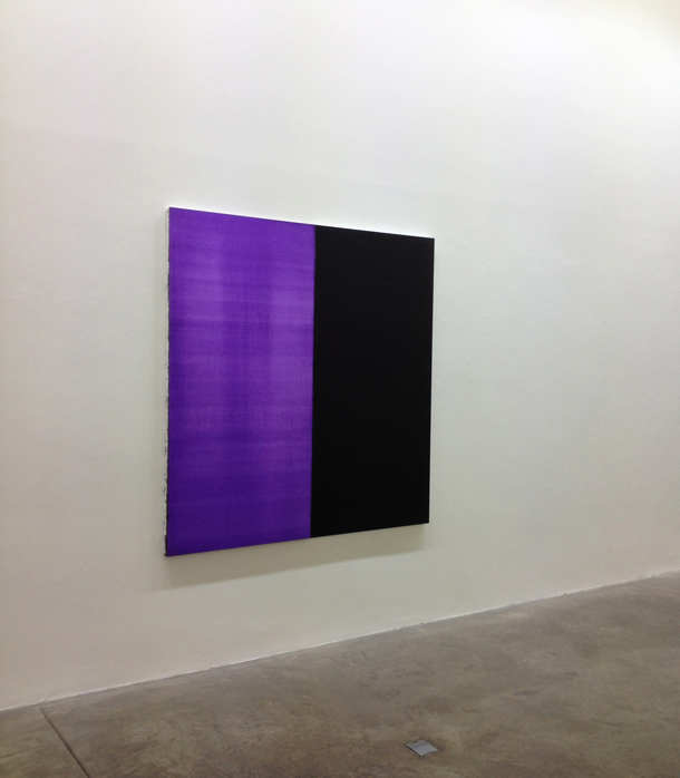 kerlin gallery dublin ireland