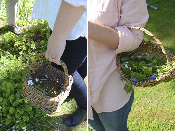 baskets_foraging_hens_carlow_eco
