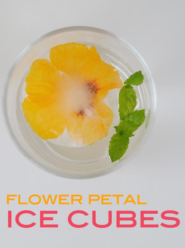 flower_petal_ice_cubes_cocktails