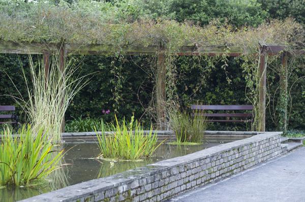 pond_st_annes_park_dublin
