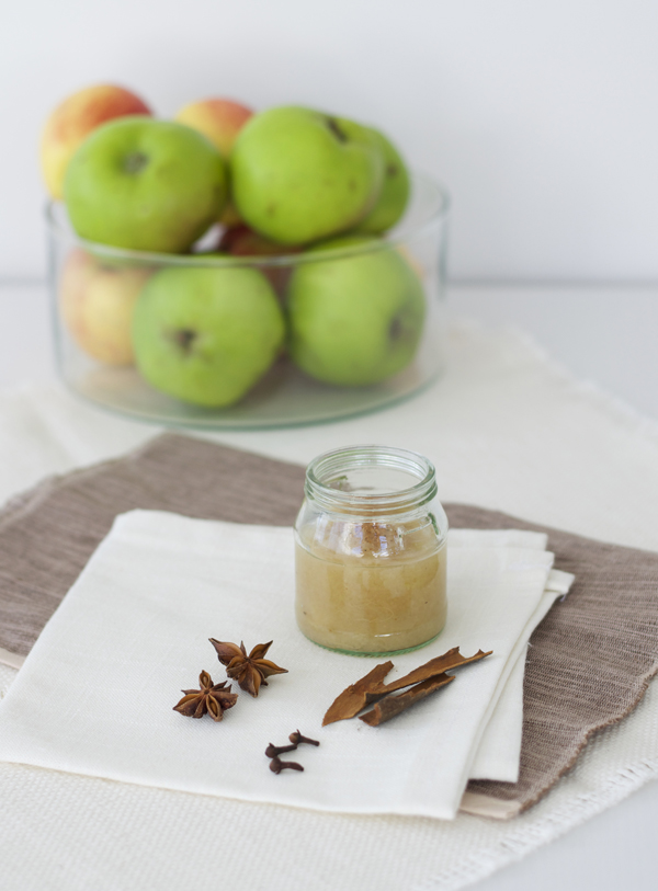 spicy_applesauce_recipe