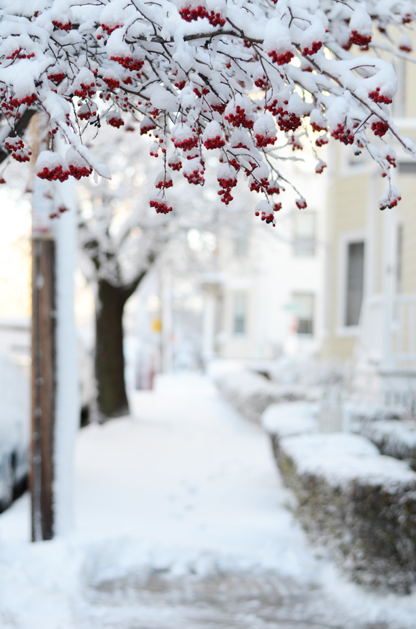 portland_maine_snow_2