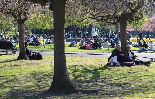 dublin-park-springtime