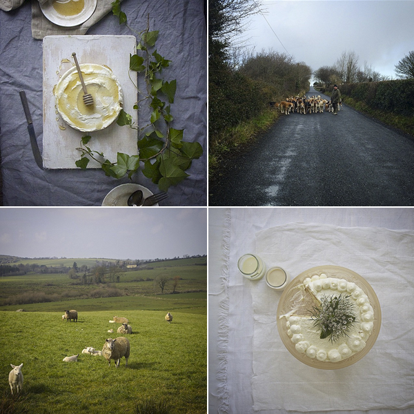 Irish Instagram accounts to follow - Imen McDonnell, Modern Farmette