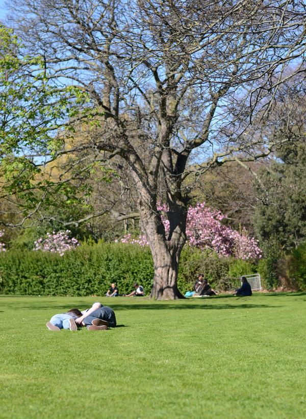 stephens-green-dublin-spring