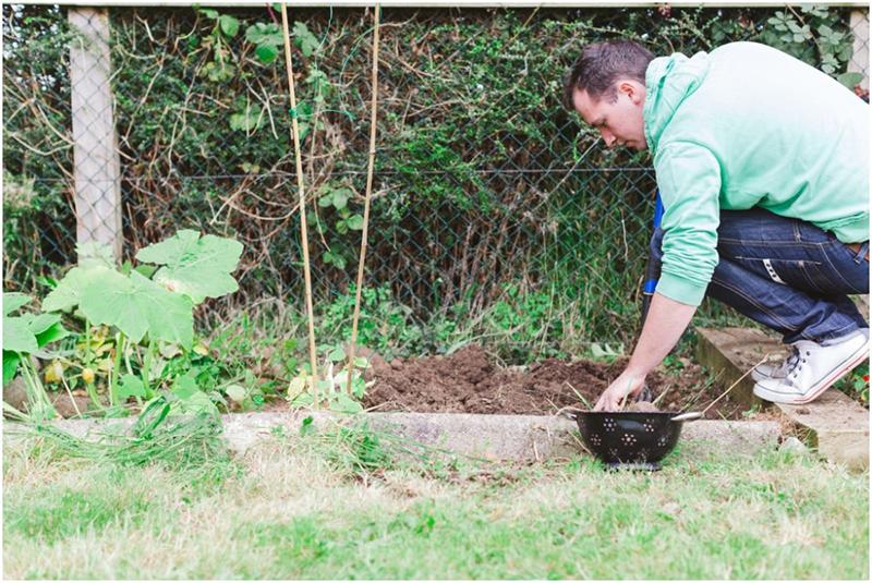 ireland-gardening