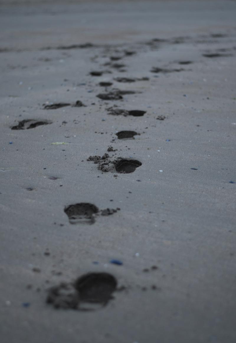 footprints-portrane-beach