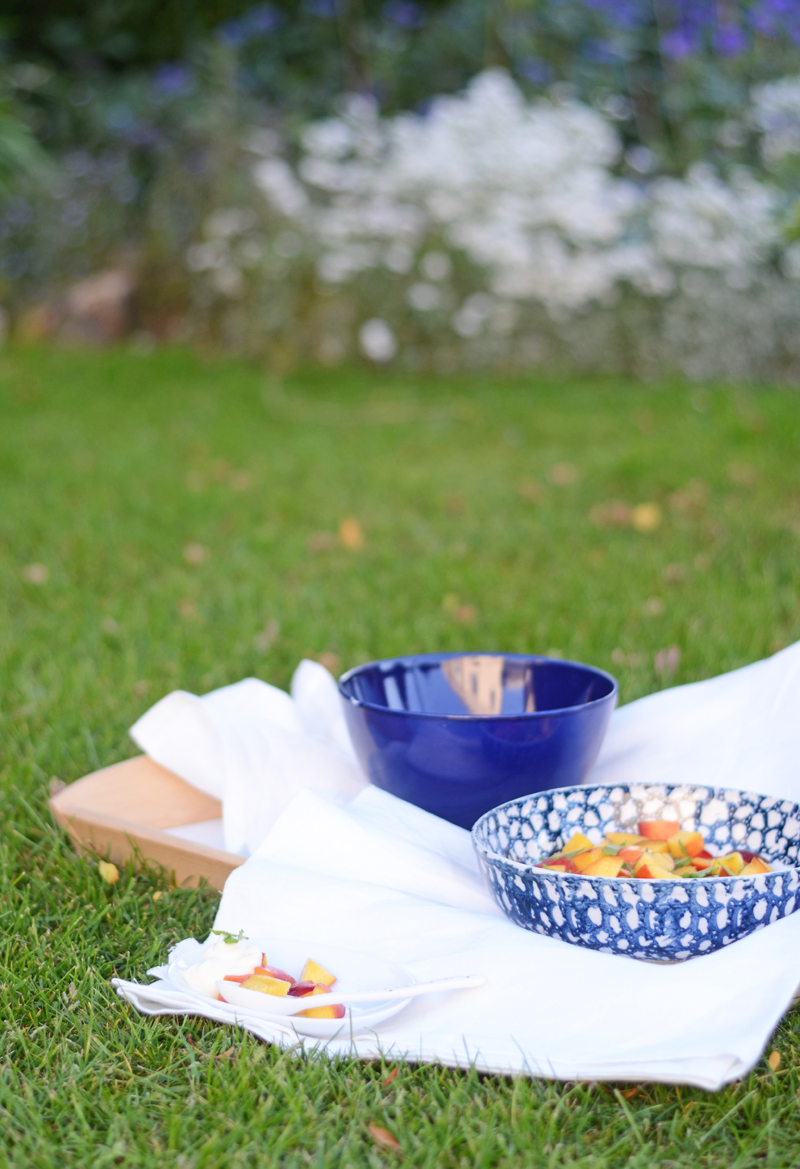 summer-dessert-nectarines