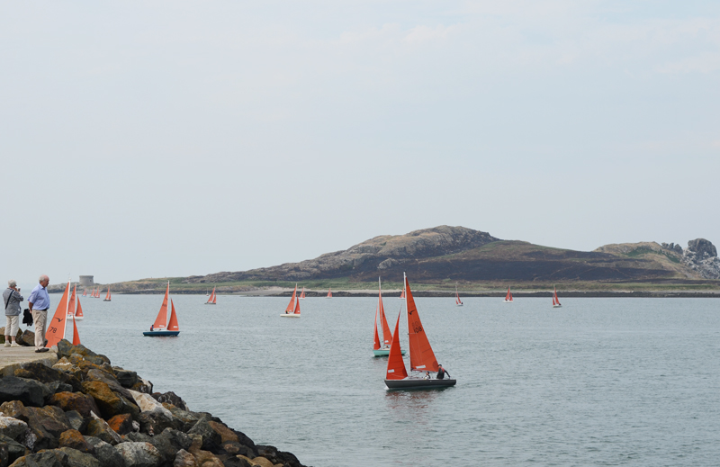 howth-harbor-sailboats