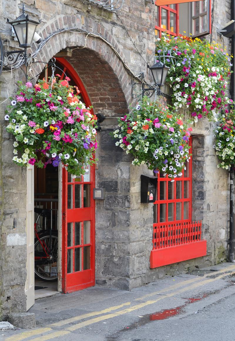 isaacs-hostel-flowers