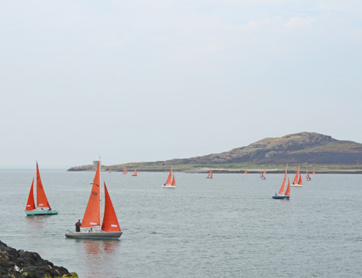 sailboats-howth-ireland