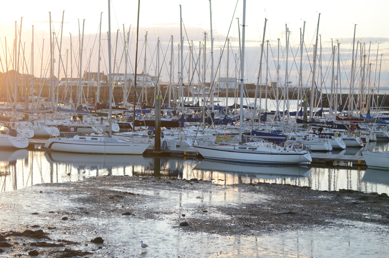 howth-sailboats-golden-hour
