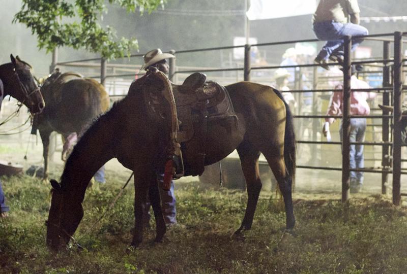cowboy-horse-texas-rodeo