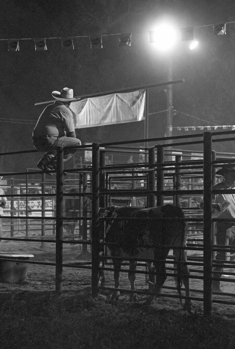 rodeo-watching