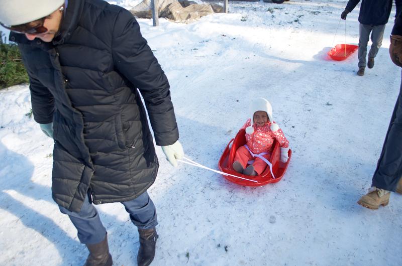 maya-sled